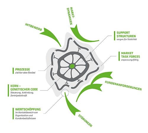 fokus7-business7-infografik-zellmodell